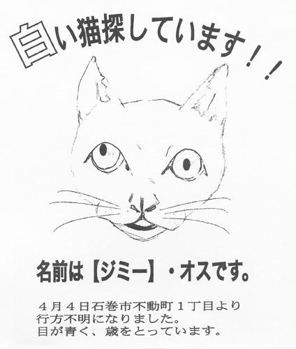 五井さんが作った《たずね猫》のポスター